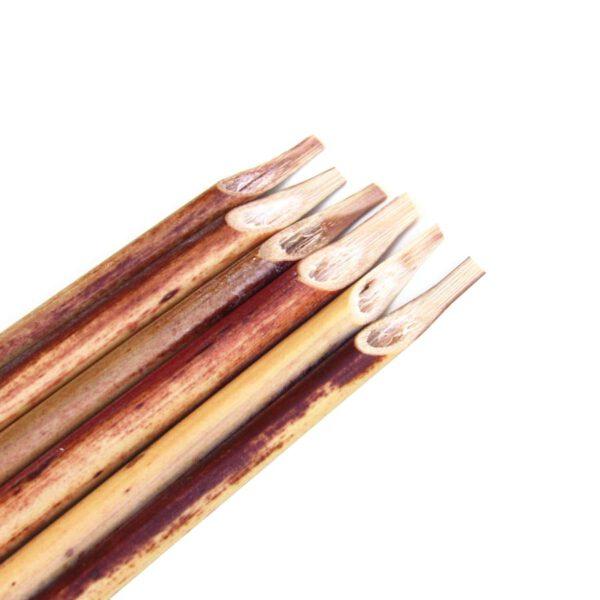 قلم نی دزفولی دانش آموزی